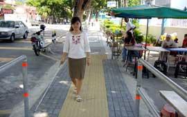 Sunshine Path 2007